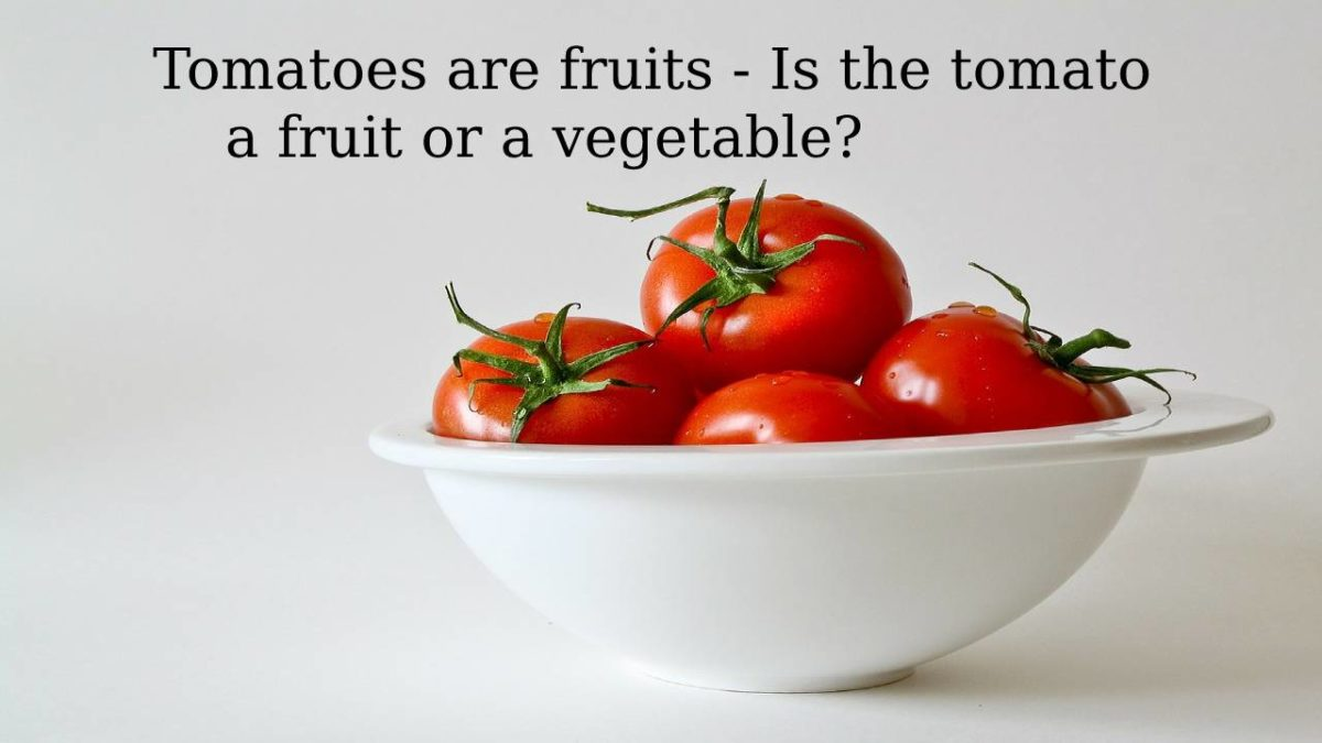 Tomatoes are fruits – Is the tomato a fruit or a vegetable?